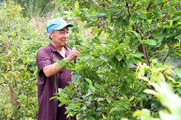Hậu Giang: Chủ động sản xuất an toàn để bảo vệ môi trường