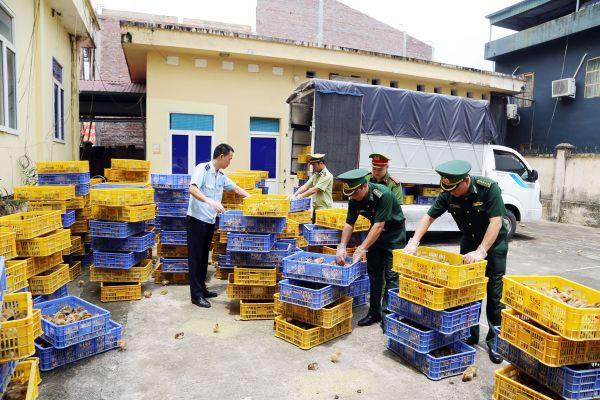 Hải Hà: Tăng cường đấu tranh phòng, chống buôn lậu
