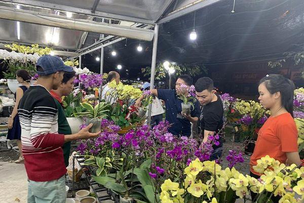 TPHCM chợ hoa nhộn nhịp những ngày cuối năm