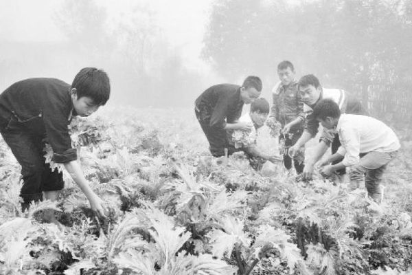 Chăm lo học sinh vùng khó ở Yên Bái
