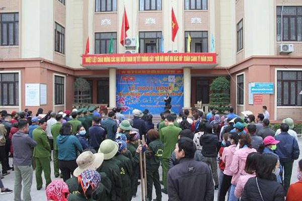 Trồng mới 100 cây bàng Đài Loan tại phường Tuần Châu