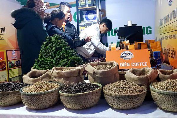 Ngành cà-phê lao đao vì dịch Covid-19