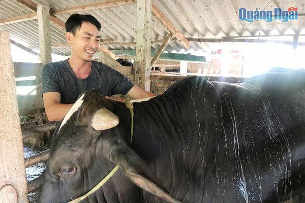 Quỹ Hỗ trợ nông dân: Đổi mới phương thức hỗ trợ sản xuất
