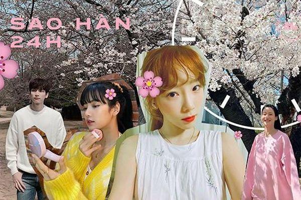 Sao Hàn 24H: COVID-19 có bủa vây vẫn không quên ngắm hoa anh đào mùa Xuân