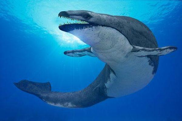 Khám phá quái vật tiền sử 'thằn lằn chúa' chuyên săn cá voi