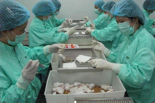 Thử vắc xin Covid-9 giai đoạn 2: 'Kỳ tích' mang tên Việt Nam