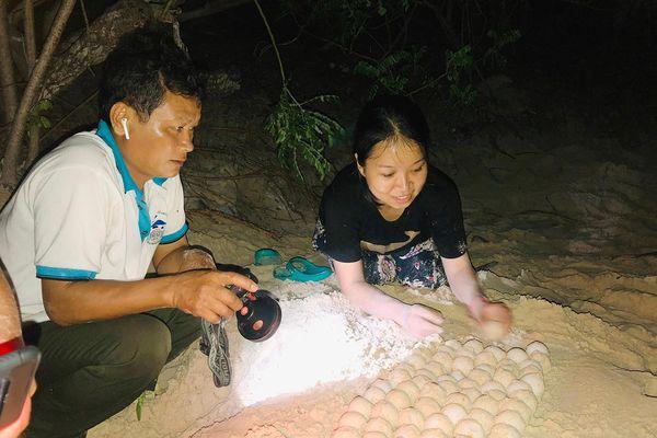 Những người truyền cảm hứng bảo tồn rùa biển