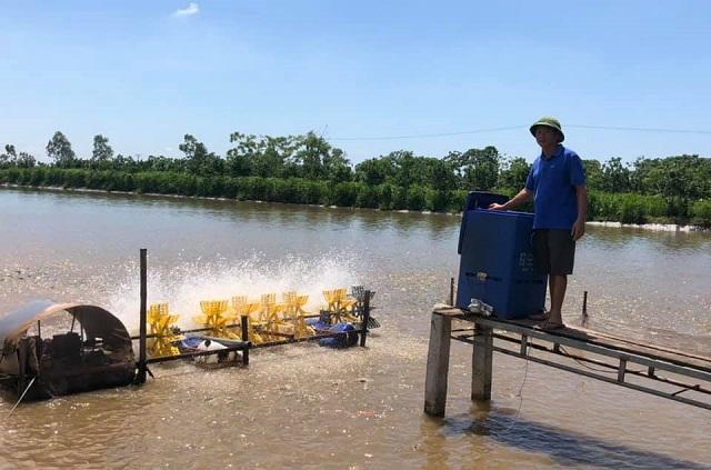 Lãi cao nhờ nuôi cá VietGAP