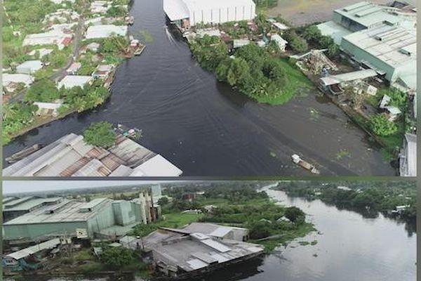 Hậu Giang: Tái diễn tình trạng ô nhiễm nghiêm trọng trên sông Cái Lớn
