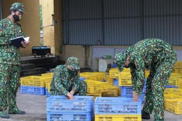 Quảng Ninh: Bắt giữ vụ vận chuyển trái phép gia cầm giống từ Trung Quốc