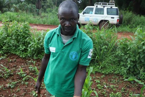 Nam Sudan đột biến năng suất nhờ thuốc trừ sâu sinh học