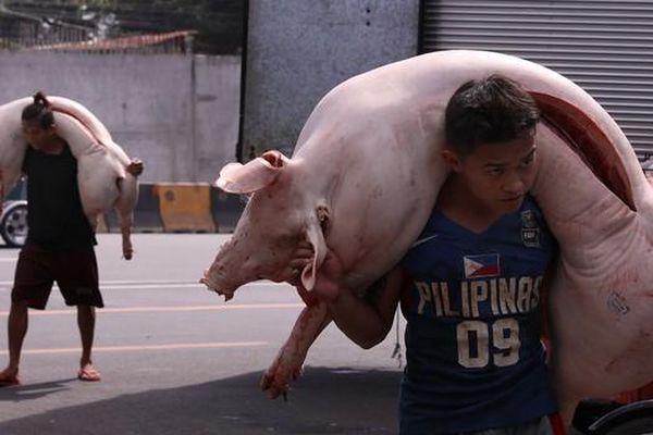 Trung Quốc bất ngờ cấm nhập khẩu thịt lợn từ Đức