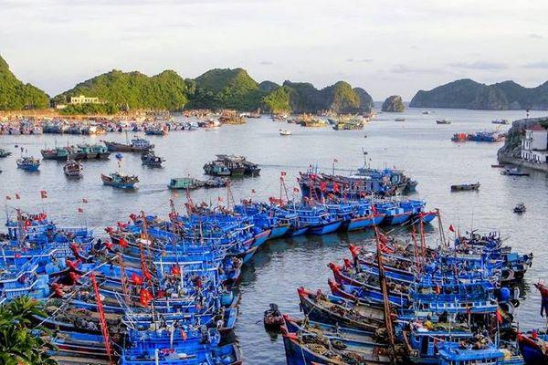 Hải Phòng: Công bố mở cảng cá Ngọc Hải và cảng cá Trân Châu