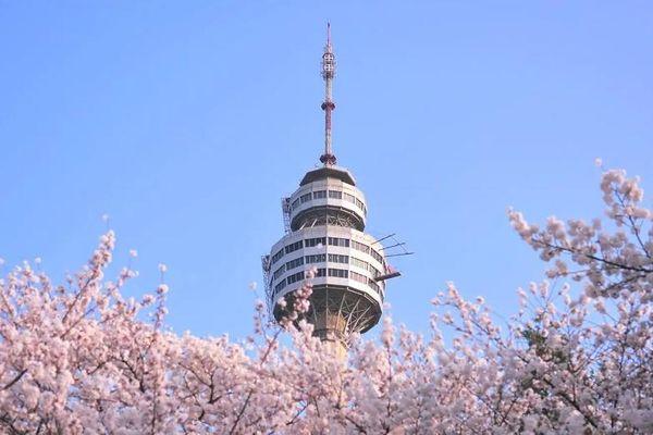 Du lịch Thành phố Daegu- Khu đô thị lớn thứ 3 của Hàn Quốc