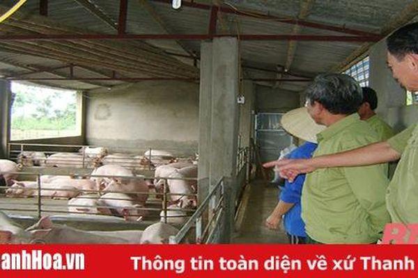 Lan tỏa phong trào thi đua 'Cựu chiến binh gương mẫu' ở huyện Hà Trung