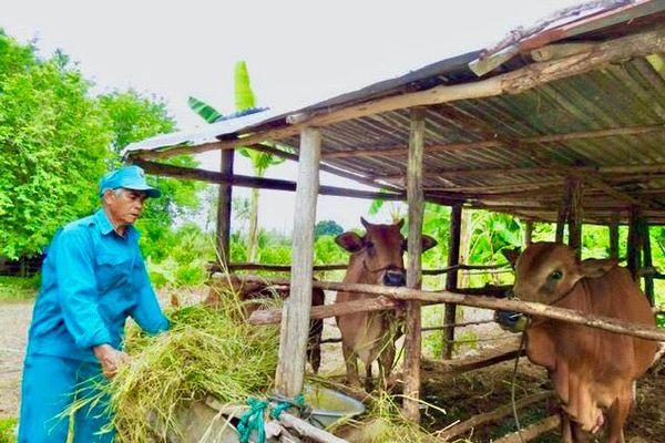 Ninh Thuận: Đời sống được cải thiện, nâng cao nhờ nhận khoán bảo vệ rừng