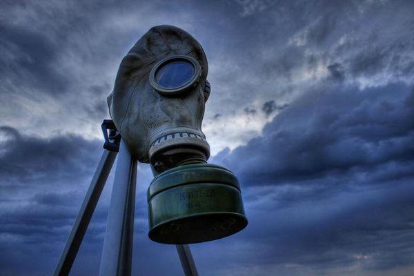 Bí ẩn 'hòn đảo chết' nơi sự sống được tính từng ngày