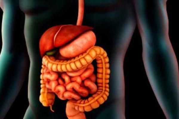 Trắc nghiệm: Người mắc ung thư đại trực tràng nên và không nên ăn gì?