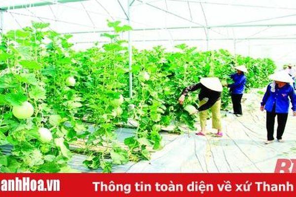 Để nông nghiệp bắt kịp xu hướng hiện đại: Liên kết vùng trong phát triển nông nghiệp bền vững