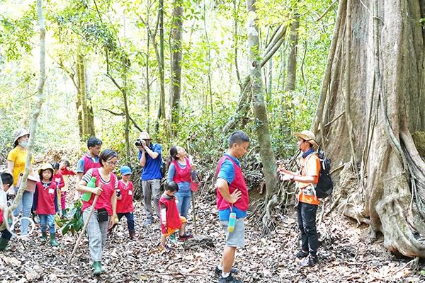Đam mê khám phá rừng xanh