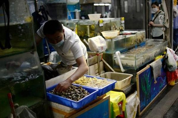 Trung Quốc phát hiện mầm bệnh liên quan COVID-19 ở thủy sản Indonesia