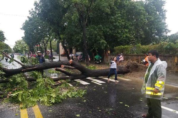 1 người ở Huế tử vong khi gia cố nhà chống bão số 5