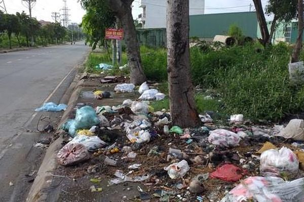 Gốc cây không phải là bãi rác
