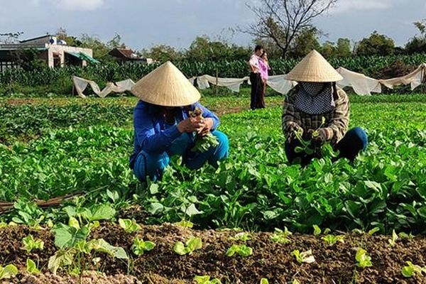 Đồng Nai: Bám sát mục tiêu nâng cao cuộc sống người dân nông thôn