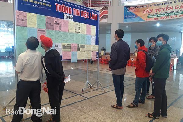 Tổ chức Sàn giao Dịch việc làm lưu động lần thứ 190 tại huyện Trảng Bom