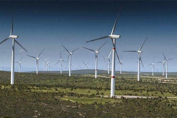 Gia Lai: Khởi công 2 dự án điện gió với tổng mức đầu tư trên 3.600 tỷ đồng