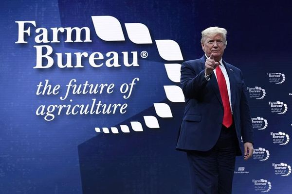 Các tổ chức nông nghiệp kêu gọi Mỹ tiếp tục ở lại WTO