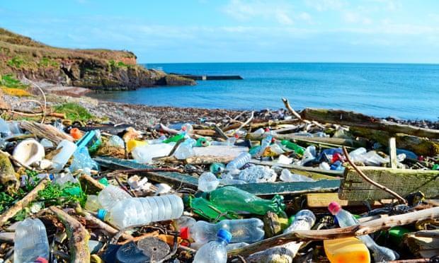 Nhiều nhà lãnh đạo cam kết ngăn chặn mất đa dạng sinh học của Trái đất