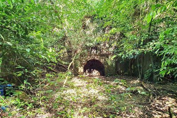 Bí ẩn về thị trấn trên núi Ba Vì bị lãng quên và lời đề nghị nhã nhặn - Bài 3: Ký ức về những biệt thự trong rừng