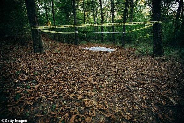 Cây cối giúp tìm ra thi thể người mất tích