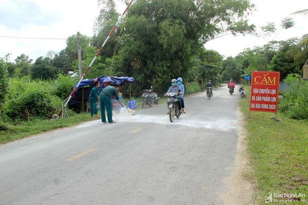 Người dân miền núi Nghệ An lại trắng tay vì dịch tả lợn châu Phi