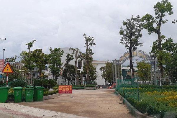 Hà Tĩnh: Trồng cây lấn chiếm hành lang quốc lộ 12C