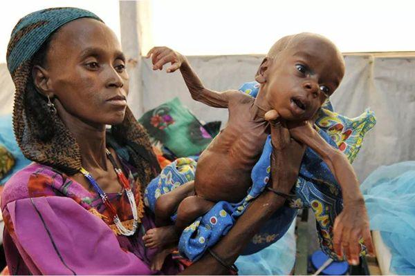 Chương trình Lương thực Thế giới bất ngờ đạt giải Nobel Hòa bình