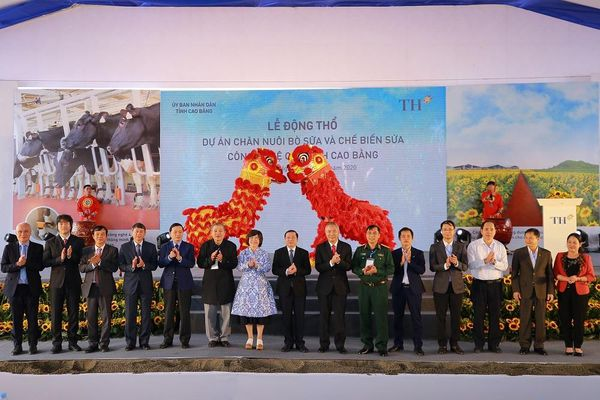 Động thổ dự án chăn nuôi bò sữa và chế biến sữa công nghệ cao tại vùng biên giới Cao Bằng