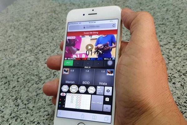 Ổ cá độ đá gà online qua điện thoại ở TP.HCM