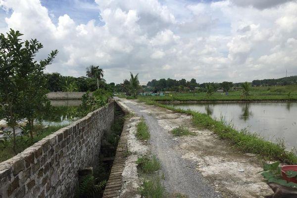 Cần siết chặt công tác quản lý đất đai