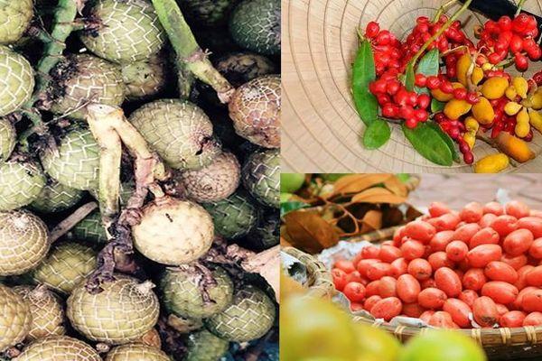 Điểm danh những loại quả gắn liền với tuổi thơ của nhiều người Việt Nam