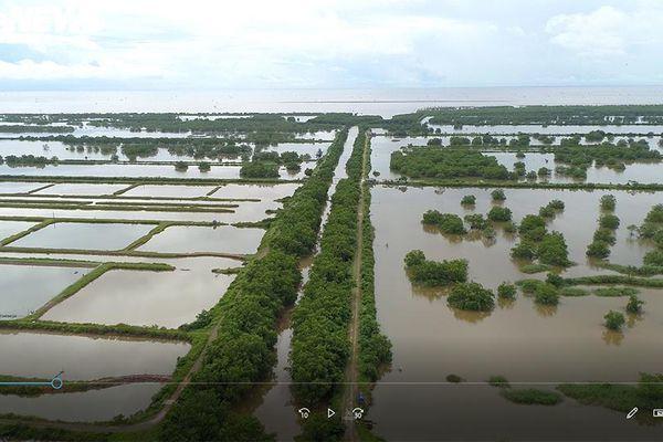 Gần 400ha đất bị bỏ quên ở Hải Phòng: Sở TN-MT vẫn 'im hơi lặng tiếng'