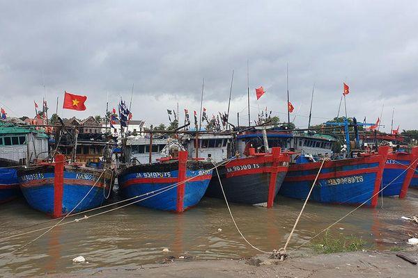 Nhiều tàu thuyền đã neo đậu an toàn trú tránh bão số 8