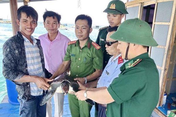 Hơn 500 động vật hoang dã được giải cứu