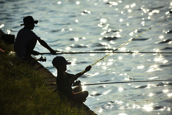 Chở mẹ đi câu cá