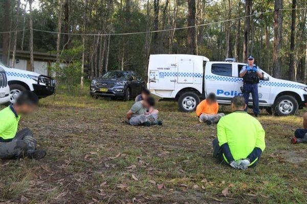 14 người Việt bị bắt trong vụ thu giữ cần sa lớn nhất nước Úc