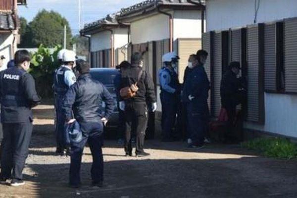 Cảnh sát Nhật bắt nhóm người Việt bị tình nghi trộm gần 700 con heo