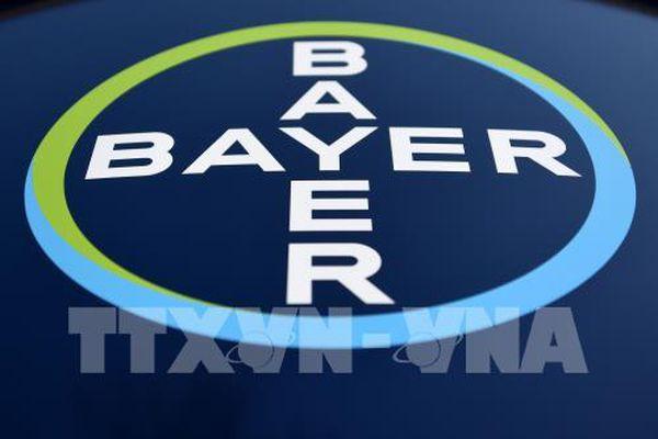 Bayer sẽ mua lại AskBio với giá 4 tỷ USD
