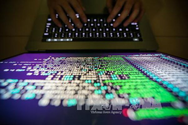 Phát triển máy chủ có khả năng chống tấn công mạng