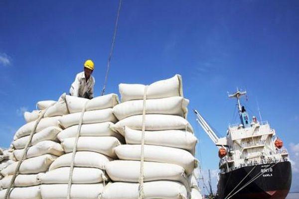 Gạo Việt Nam theo đà EVFTA tiến vào thị trường châu Âu
